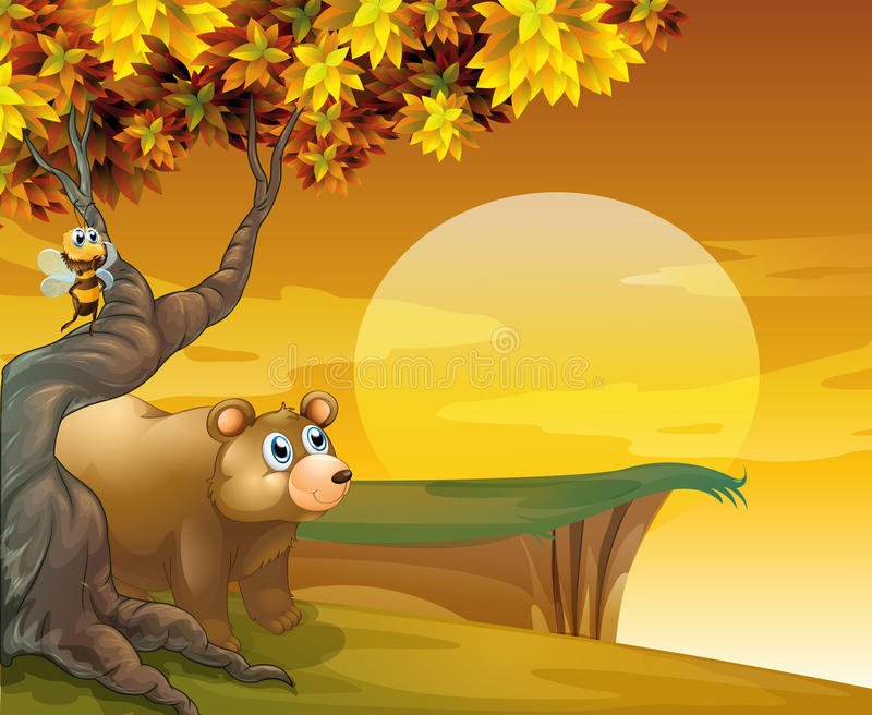 A big brown bear looking at the sunset stock illustration