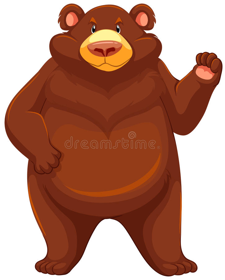 Big brown bear. One big brown bear on a white background vector illustration