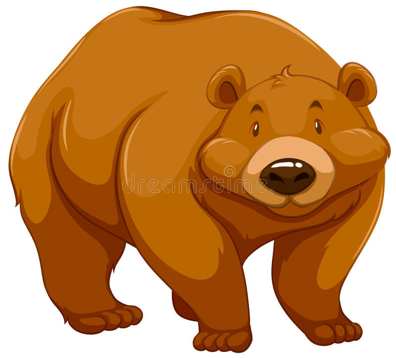 Big brown bear. On a white background royalty free illustration