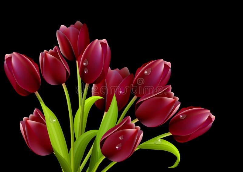 Big bunch of tulips stock illustration