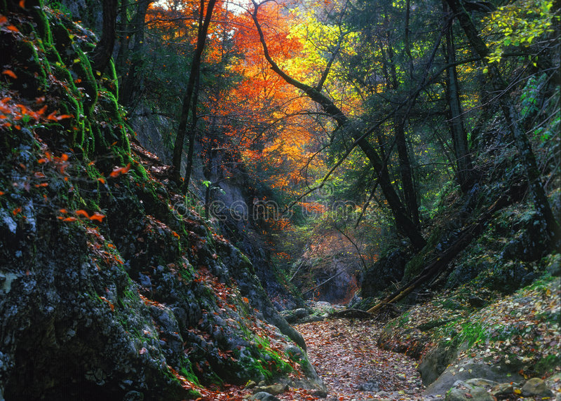 The Big Canyon Of Crimea Stock Photos