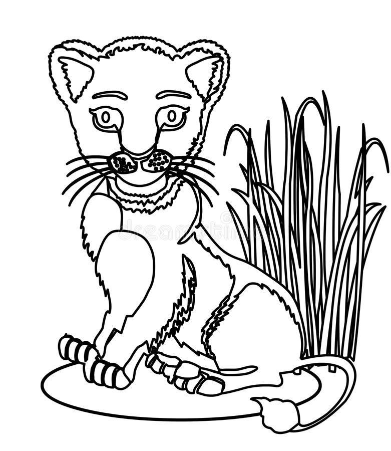 Download Big Cat Coloring Page Stock Illustration