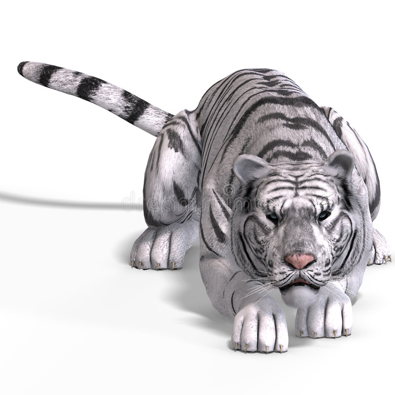 Big Cat White Tiger stock illustration