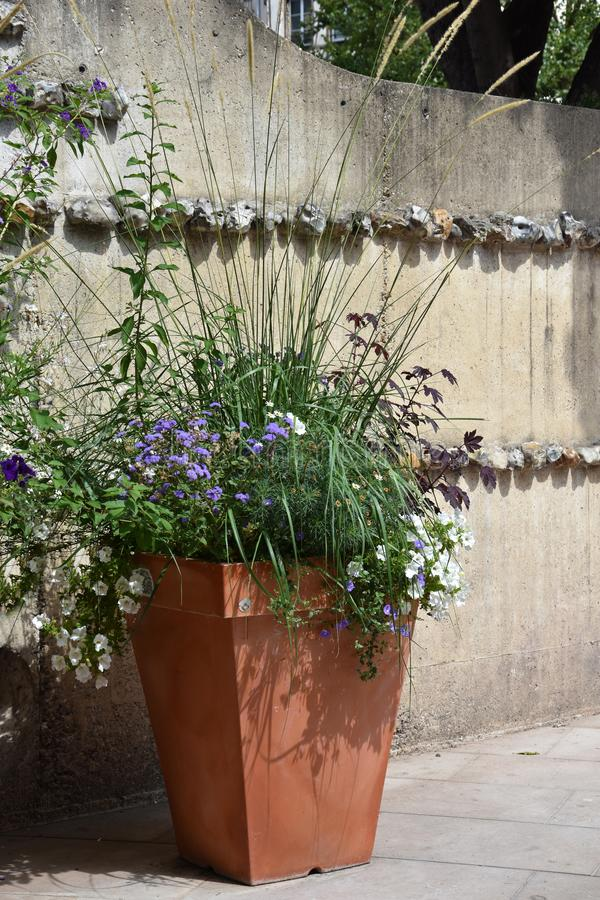 Big ceramic flowerpot with summer flowers. Big flowerpot with colorful summer flowers in the streets of Rouen, Normandy royalty free stock images