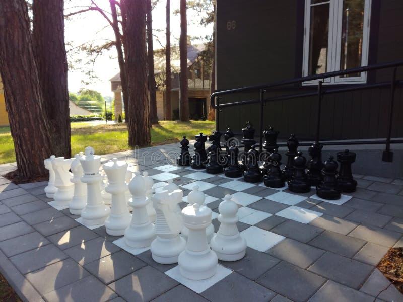 Chess game nature stock photos