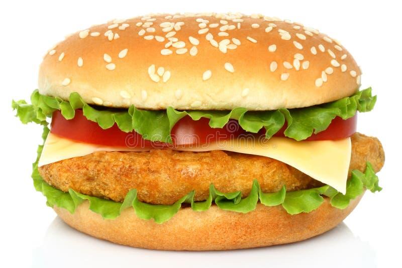 Big chicken hamburger stock image