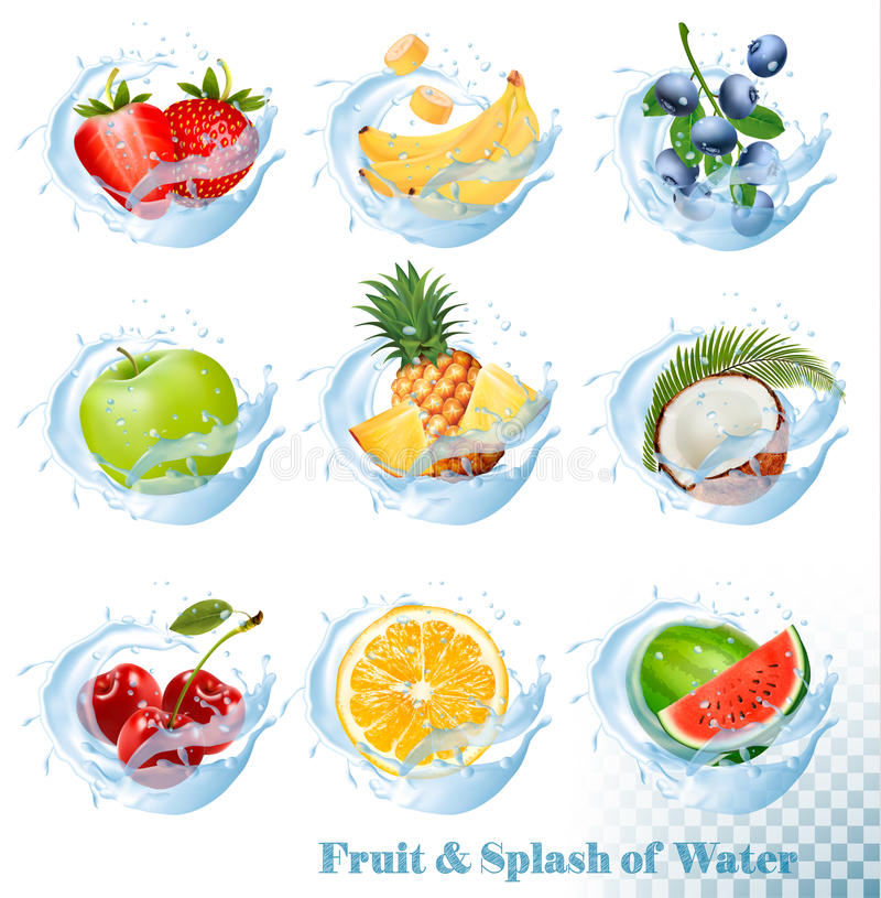 Big collection of fruit in a water splash icons royalty free illustration
