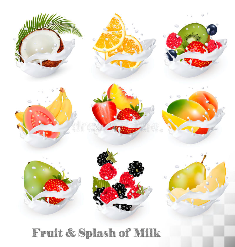 Big collection icons of fruit in a milk splash. Guava, coconut, mango royalty free illustration