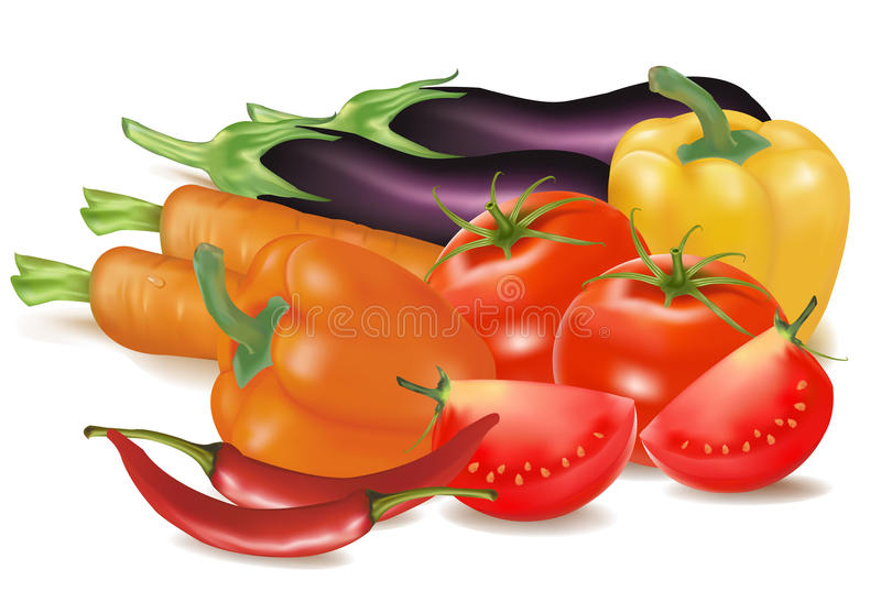 The big colorful group of vegetables. Photo-realistic . The big colorful group of vegetables royalty free illustration