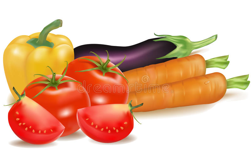 The big colorful group of vegetables. Photo-realistic . The big colorful group of vegetables stock illustration