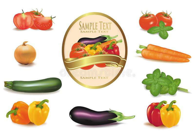 The big colorful group of vegetables and label. Photo-realistic stock illustration
