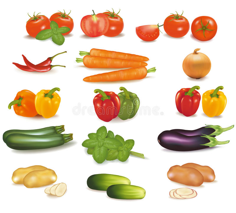 The big colorful group of vegetables. Photo-realis. Tic vector illustration
