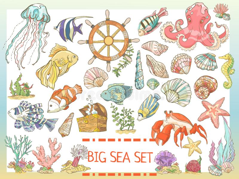 Big colorful sea set. Collection of hand drawn fish, seaweed, octopus, jellyfish, seahorse, crab shells stock illustration
