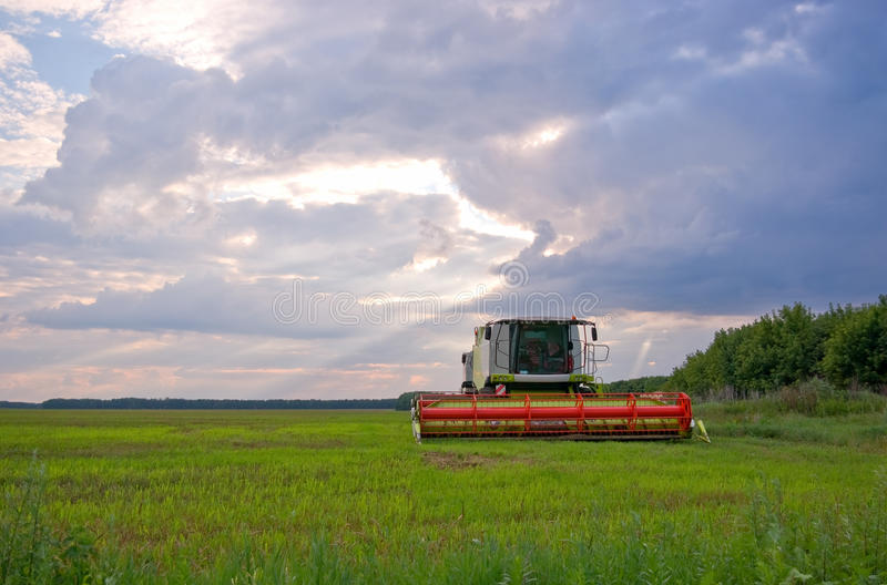 Download Big  combine stock image. Image of business, grain, agricultural - 21417271