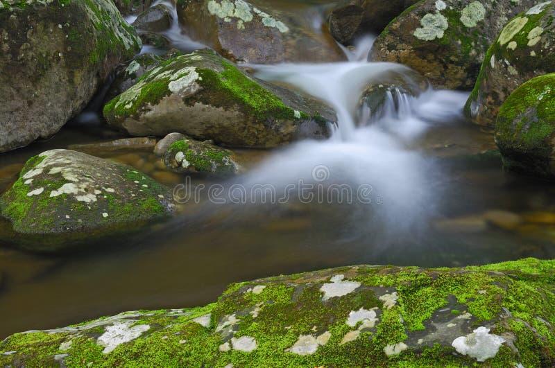Big Creek Cascade royalty free stock photos