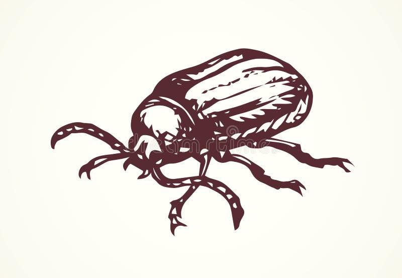 Lucanus cervus. Vector drawing stock illustration