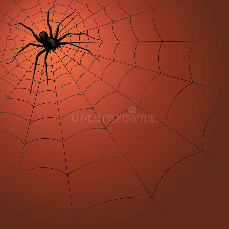 Big dark spider on the web vector illustration