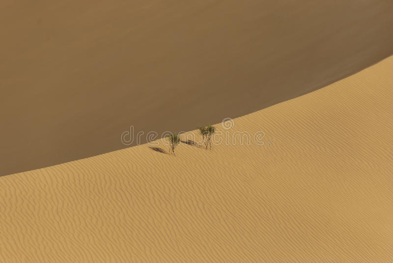 Download The big desert stock photo. Image of extreme, landscape - 22961100