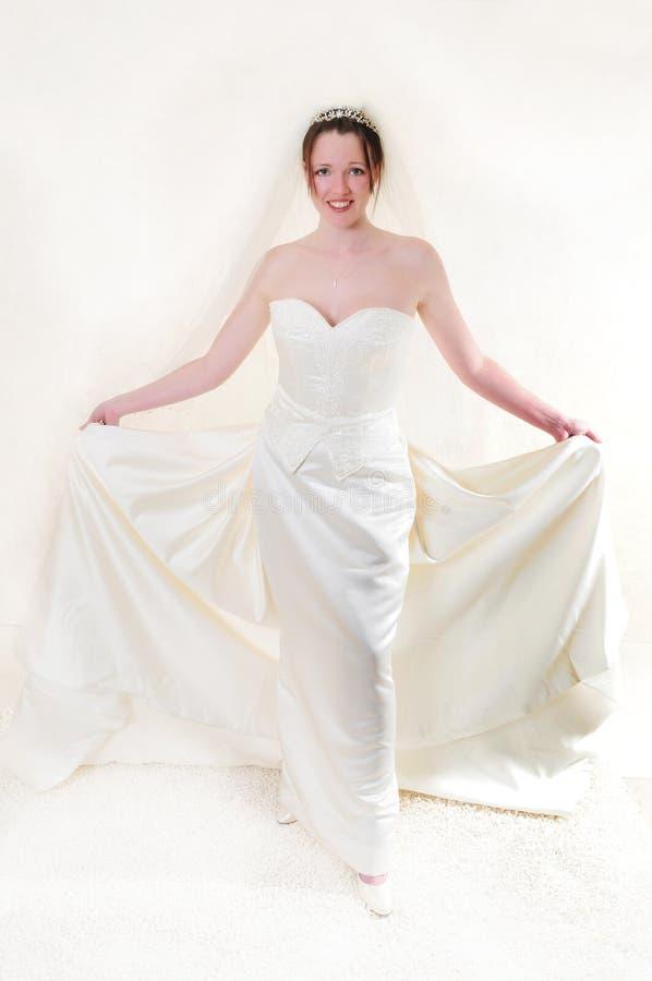 Free Big Dress Stock Image - 8461131