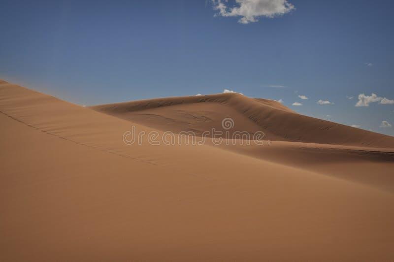 Big dunes of Sahara desert stock images