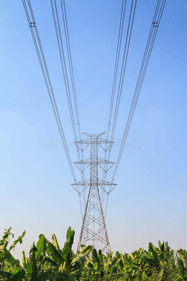 Big electric tower pole over banana farm. And blue sky stock images
