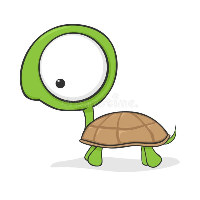 Big-eyed turtle stock photos