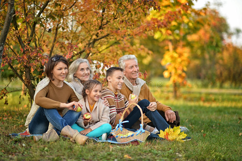Big family on picnic stock images