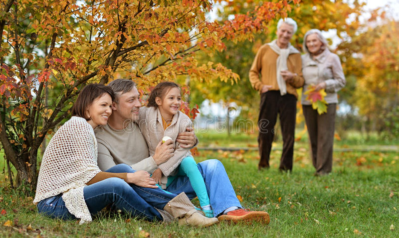 Big family on picnic royalty free stock photography