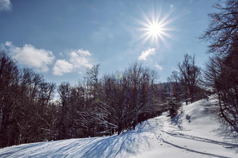 Big Fatra mountains, Slovakia, snowy landscape royalty free stock image