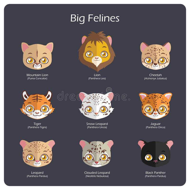 Free Big Feline Flat Avatars With Regular And Scientific Names Royalty Free Stock Image - 129799916