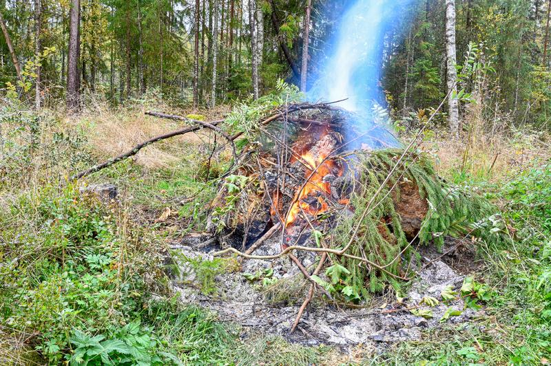 Big fire in autumn in Varmland Sweden royalty free stock image