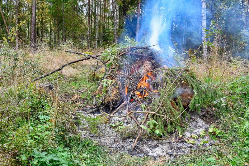 Big fire in autumn in Varmland Sweden stock photos