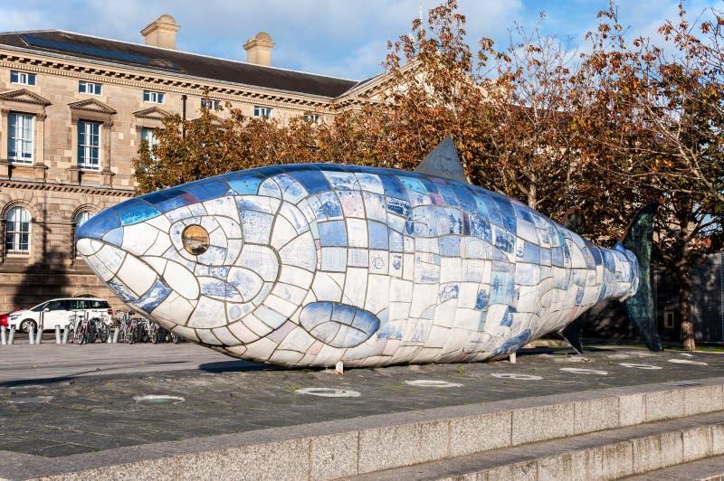 Big Fish statue in Belfast, Northern Irelnad stock images