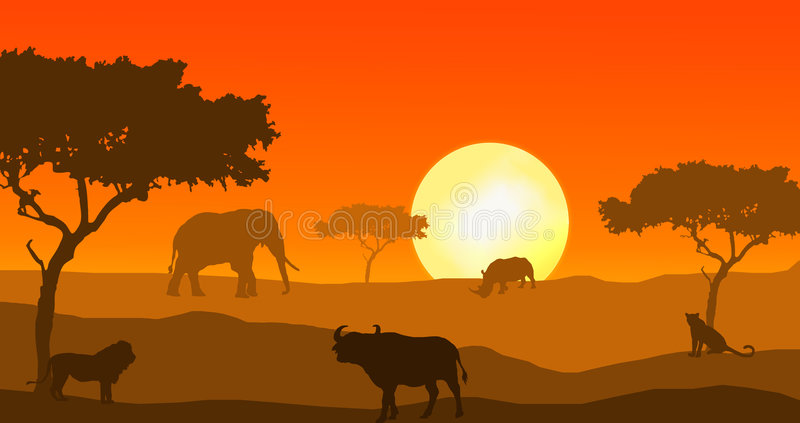 Big Five of Africa in sunset. The big five (Elephant, Buffalo, leopard, rhino and lion) in african sunset
