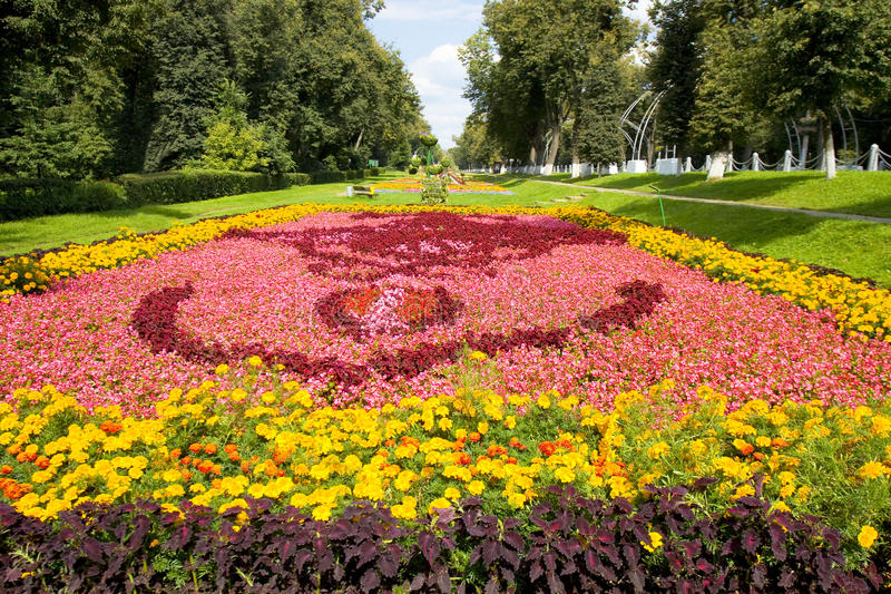 Big flower bed stock photography