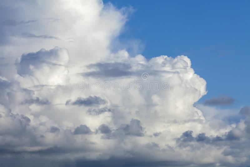 Big white fluffy clouds cloudscape 118. Big fluffy white clouds with a blue sky background. A few darker small clouds adding more drama in this cloudscape royalty free stock image