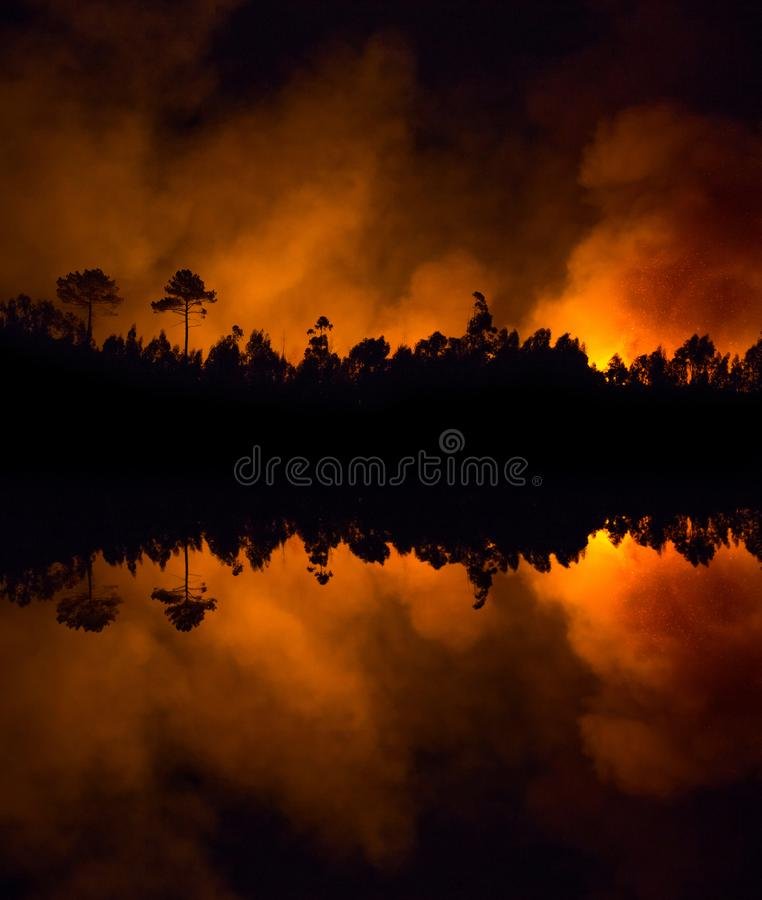 Big forest fire near the lake. Big forest fire near the lake, mirror landscape stock photography