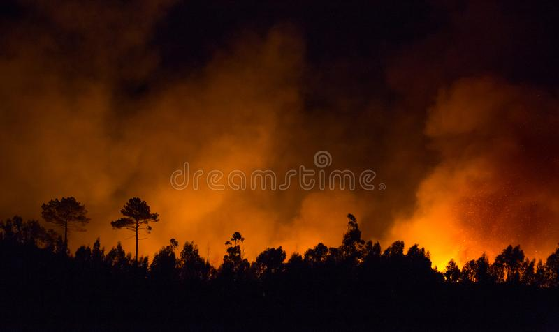 Big forest fire during night. Big forest fire during night in Braga, Portugal stock photo