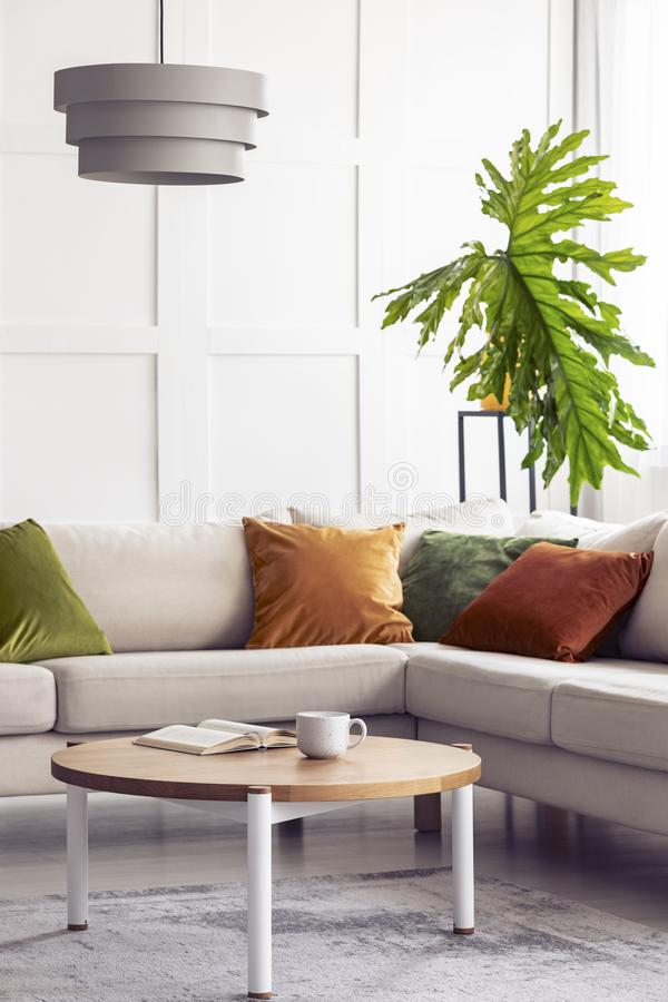 Big green leaf and simple white lamp above corner sofa in colorful living room interior, real photo. Big green leaf and simple white lamp above corner sofa in royalty free stock image