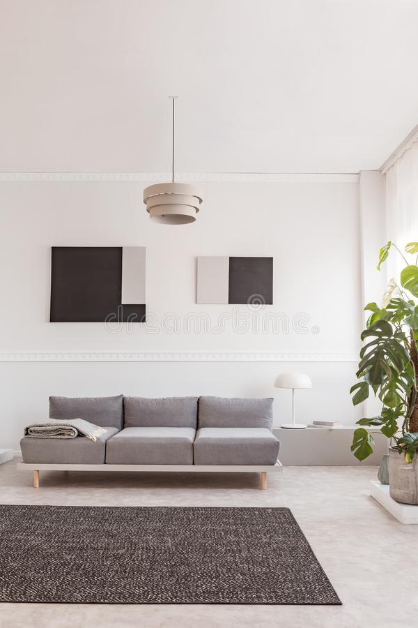 Big green monster plant in concrete pot next to chic sofa in white interior royalty free stock photos
