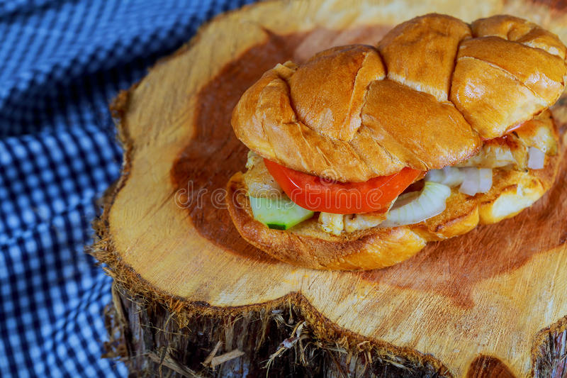 Big grilled chicken hamburger, French fries and vegetables stock photo