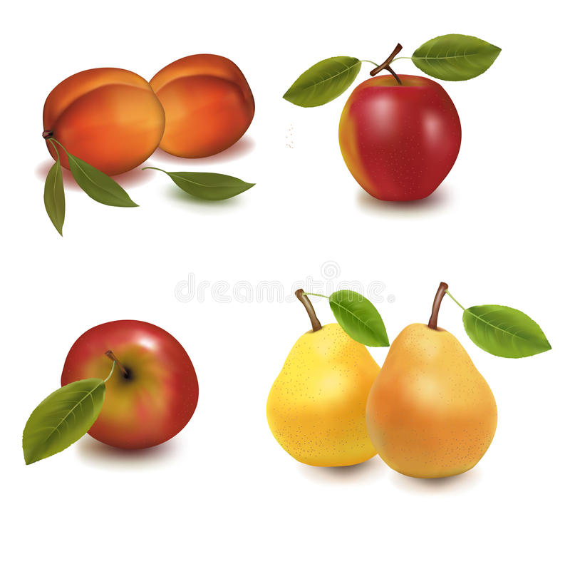 Free Big Group Of Fruit. Stock Image - 14710891