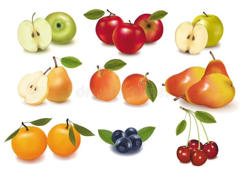 Big group of ripe fruit. Photo-realistic illustration. Big group of ripe fruit royalty free illustration