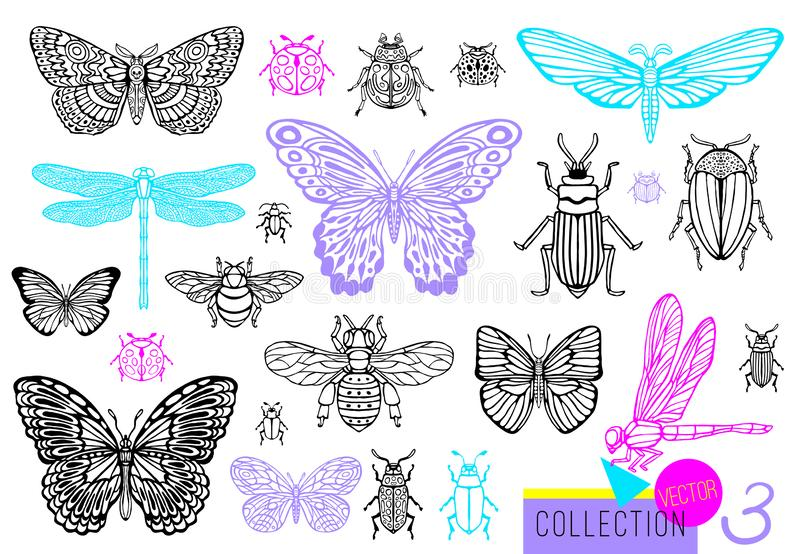 Big hand drawn line set of insects bugs, beetles, honey bees, butterfly moth, bumblebee, wasp, dragonfly, grasshopper. royalty free illustration