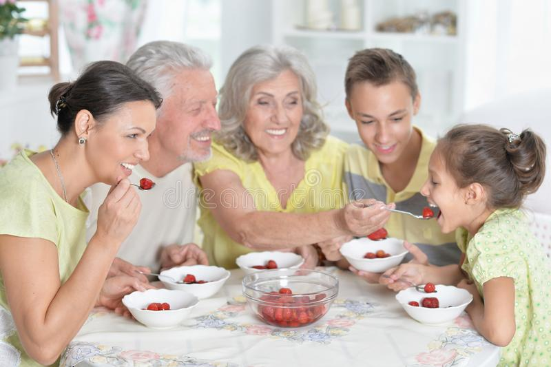 Portrait of big happy family eating fresh strawberries at kitchen. Big happy family eating fresh strawberries at kitchen stock photography