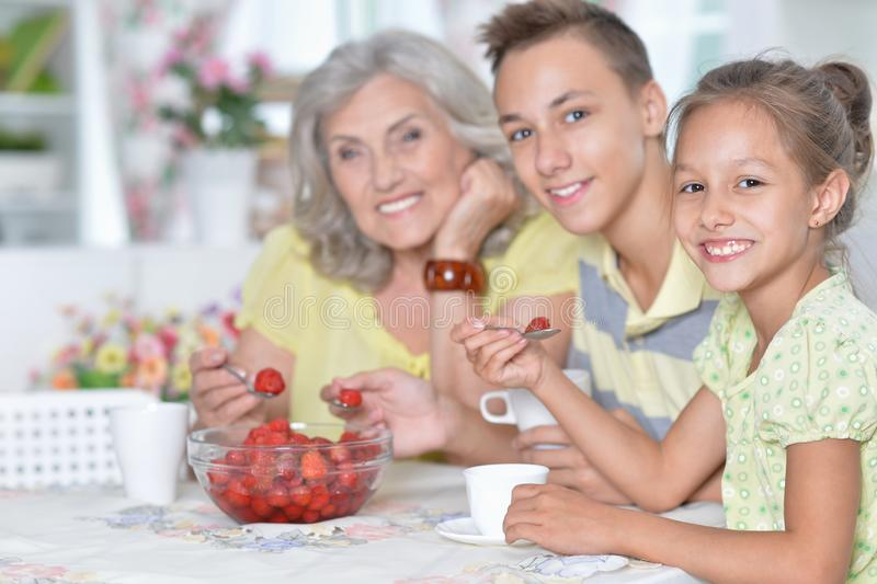 Portrait of big happy family eating fresh strawberries. Big happy family eating fresh strawberries at kitchen stock photography