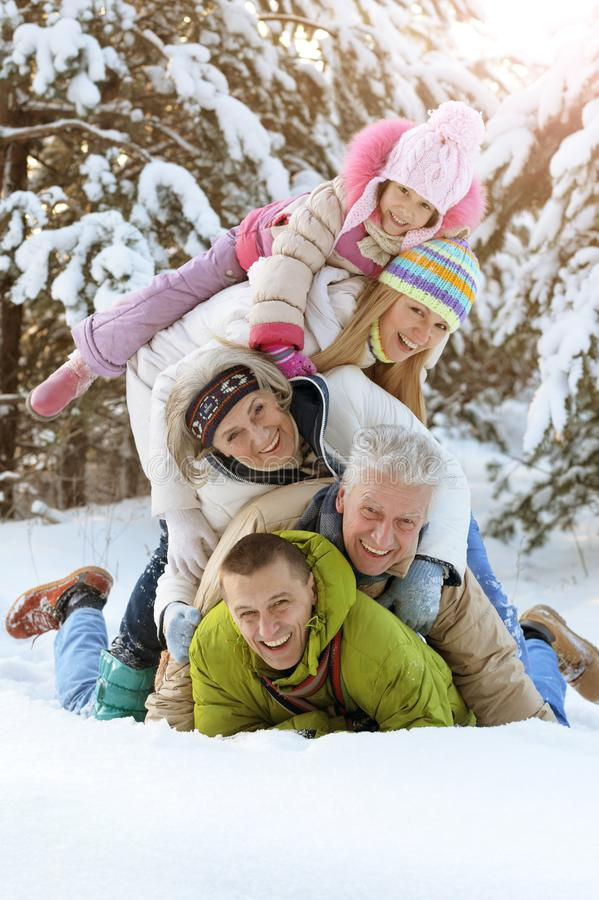 Free Big Happy Family Having Fun In Winter Park Covered With Snow Royalty Free Stock Photos - 168383678