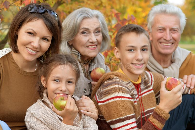 Big happy family on picnic. In autumn stock photography