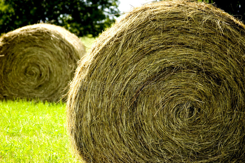 Big Haybail royalty free stock photography