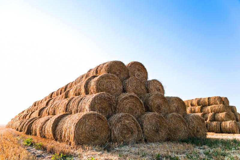 Big haystack at field. In the countryside stock photos